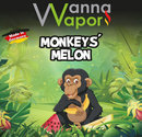 Monkeys Melon Liquid 9 mg 10 ml